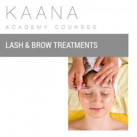 Lash & Brow Treatments